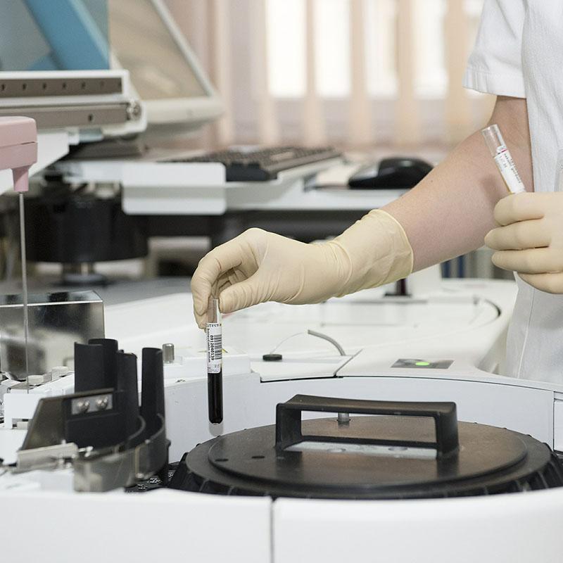 clinicaveterinariasampron.es - analisis